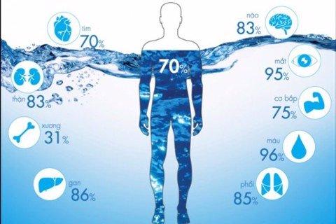 Tác dụng ít biết của nước Hydrogen trong việc phòng chống lão hóa